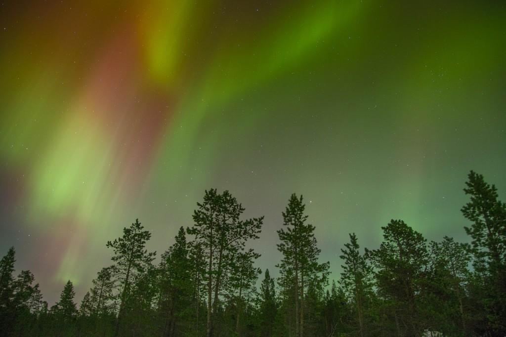 aurora-borealis-768703_1280