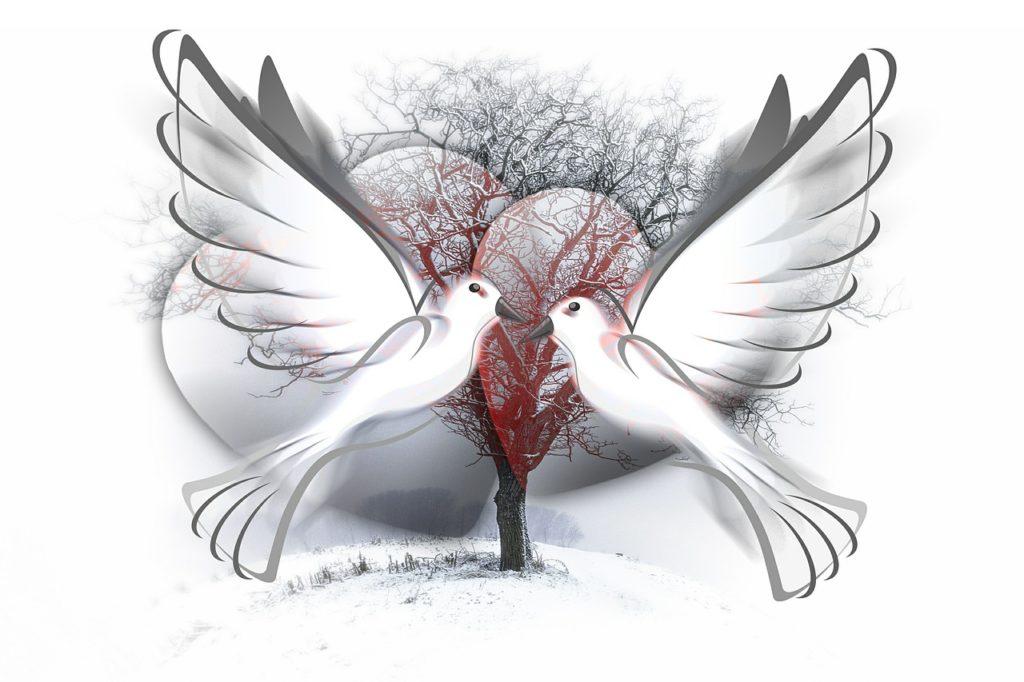 peace-dove-588991_1280