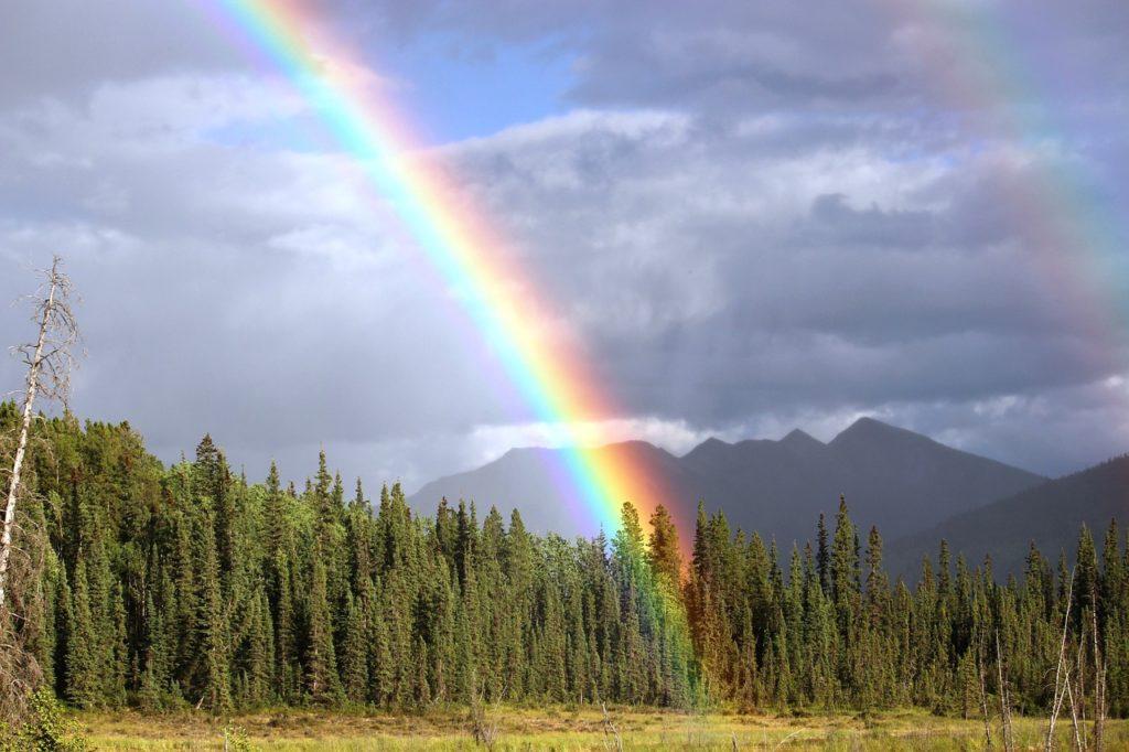 rainbow-436183_1280