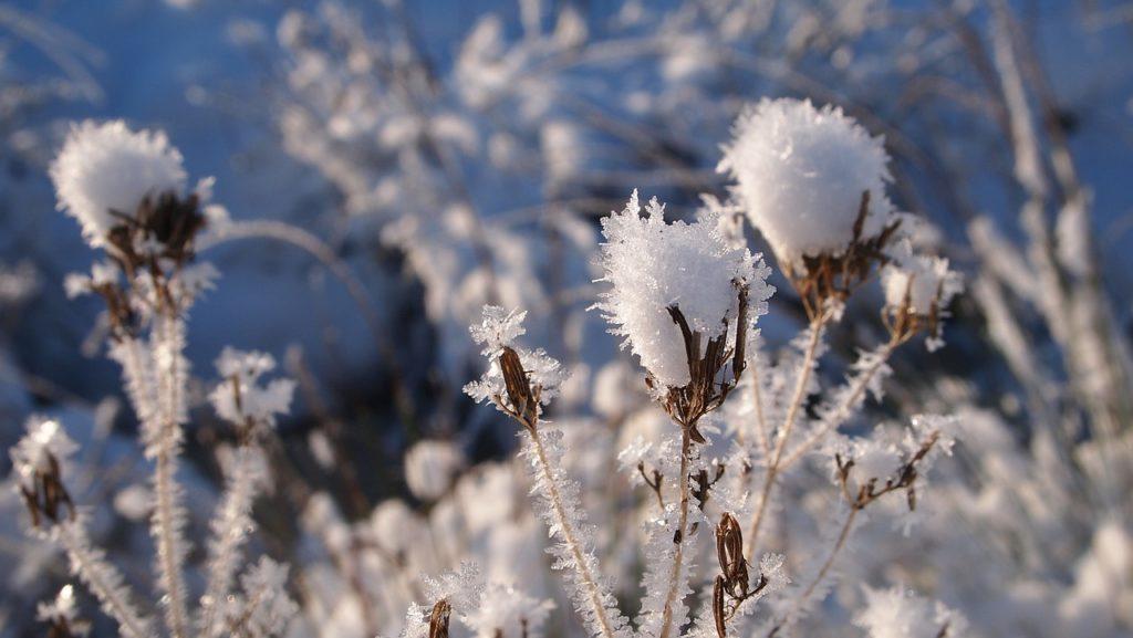 snow-667784_1280